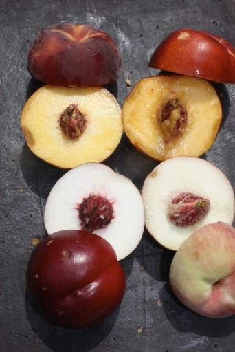 4ine peches-nectarines